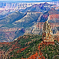 Point Imperial 8803 Feet On North Rim Of Grand Canyon National Park-arizona  by Ruth Hager