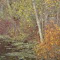Pondside Pastel by Ann Horn