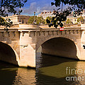 Pont Neuf Over The Seine River Paris by Louise Heusinkveld