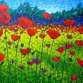 Poppy Field by John  Nolan