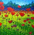 Poppy Field by John  Nolan