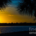 Port Charlotte Beach Sunset In January by Anne Kitzman