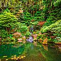 Portland Japanese Garden by Lee Cuellar