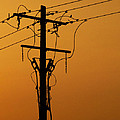 Power Line Sunset by Don Spenner