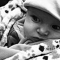 Presious Baby by Jamie Lynn
