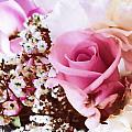 Pretty In Pink by Sharon Lisa Clarke