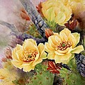 Prickly Pear In Bloom by Summer Celeste
