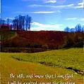 Psalm 46 10 by Michelle Greene Wheeler