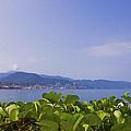 Puerto Vallarta by Aged Pixel