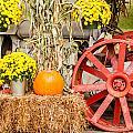 Pumpkins Next To An Old Farm Tractor by Alex Grichenko