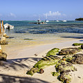 Punta Cana Beach by Viktor Birkus