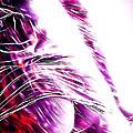 Purple Rain by Steve K