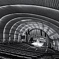 Radio City Music Hall Theatre by Susan Candelario