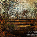 Rapps Dam Covered Bridge by Judy Wolinsky