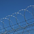 Razor Wire Fence In Las Vegas by Mark Williamson/science Photo Library