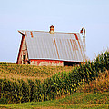 Red Barn Corn Field by Chris Harris