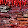 Red Chillies On Rustic Background by Ken Biggs