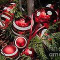 Red Christmas Balls by Carol Ailles