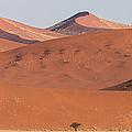 Red Dunes, Sossusvlei, Namib Desert by Panoramic Images
