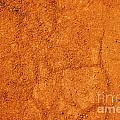 Red Earth Or Soil Background by Sylvie Bouchard