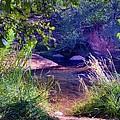 Red Rock Crossing Sedona Az by Thomas  Todd