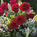 Red Rose Romance by Kathy Clark