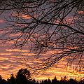 Red Sky At Night by Cheryl Baxter