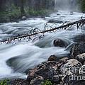 Redfish Creek In Stanley Idaho by Vishwanath Bhat