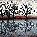 Reflecting Trees by Janet King