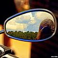 Reflections  by Kim Loftis