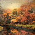 Reflections Of October by Jessica Jenney