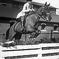 Rider Jumps At Horse Show by Underwood Archives