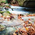 River Flowing Under Stone Bridge by Reynold Mainse
