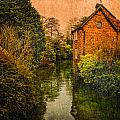 River Kennet by Mark Llewellyn