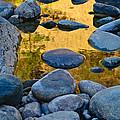 River Of Gold 2 by Sherri Meyer