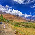 Road And Mountains Of Leh Ladakh Jammu And Kashmir India by Rudra Narayan  Mitra