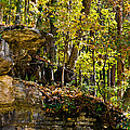 Rock Shelf And Forest by Ed Gleichman