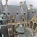 Roof Of Biltmore Estate by Jason O Watson