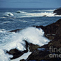 Rough Surf by Earl Johnson