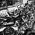 Row Of Harley Davidson Motorbikes Including Sportster Outside Motorcycle Dealership Orlando Florida  by Joe Fox
