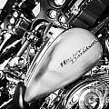 Row Of Harley Davidson Street Glide Motorbikes Outside Motorcycle Dealership Orlando Florida Usa by Joe Fox