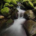 Ruckel Creek  Oregon, United States by Robert Postma