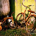 Rusty Bikes by Sonja Quintero