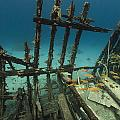 Safari Boat Wreckage And Aquatic Life In The Red Sea. by Stephan Kerkhofs