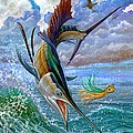 Sailfish And Lure by Terry Fox
