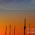 Sailing Boats by Stelios Kleanthous