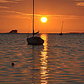 Sailor's Delight by Bill Cannon