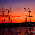 San Diego Harbor Sunset by Tommy Anderson