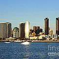 San Diego by Tommy Anderson