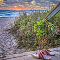 Sandy Toes by Debra and Dave Vanderlaan